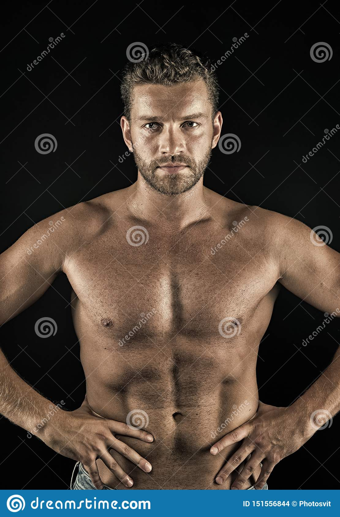 Torso with six pack stock image. Image of pack, tummy