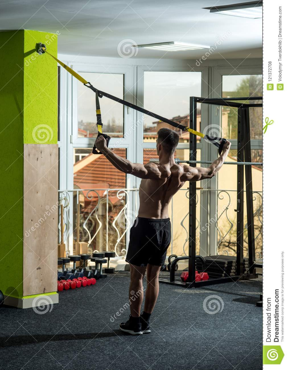 Man with nude torso, and muscular back in gym enjoy training, trx. Man with  torso, sportsman, athlete, muscular macho does exercise with trx loops, ...