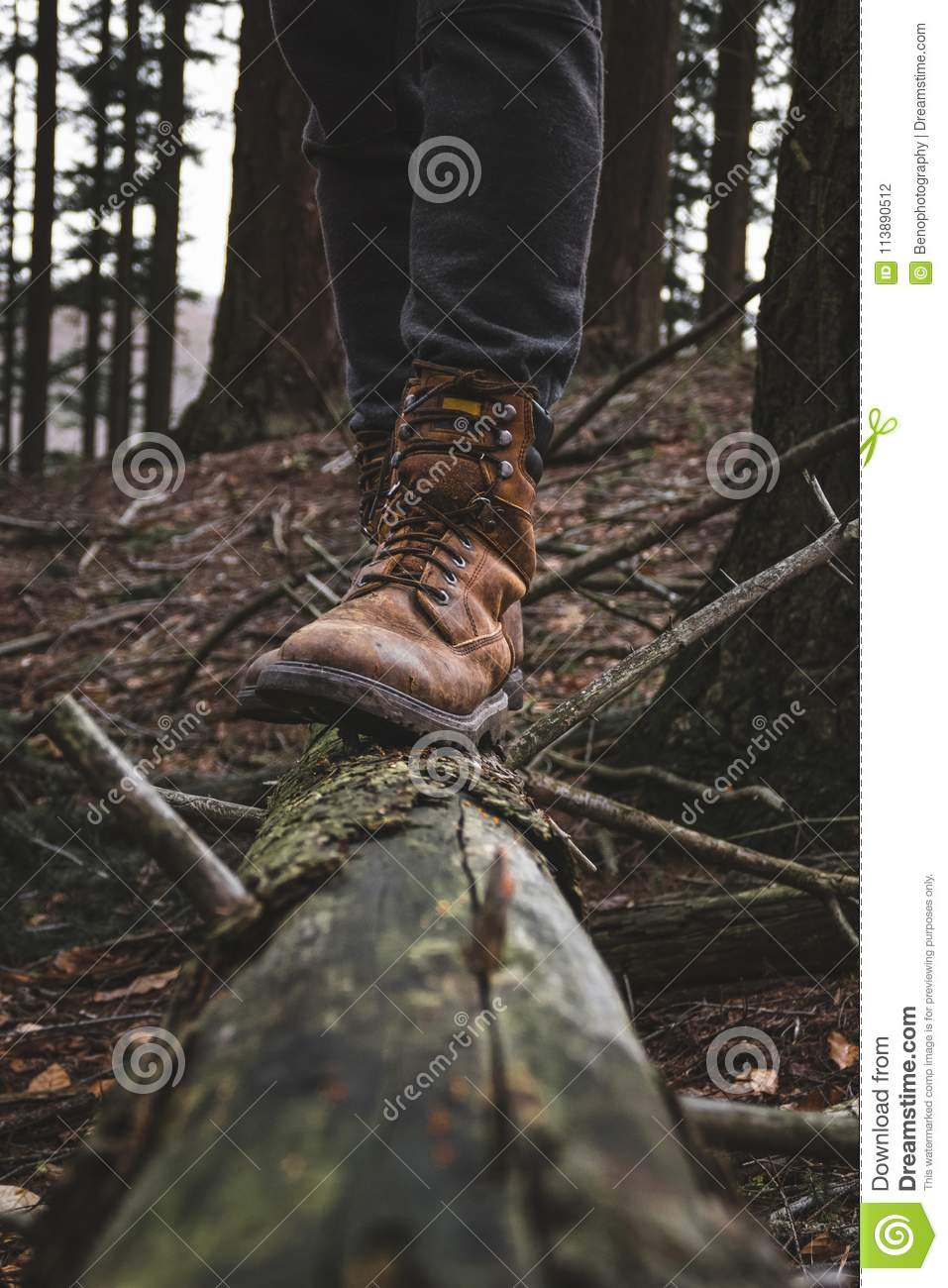 Man With Perfect Hikinng Boots Standing On The Fallen Tree