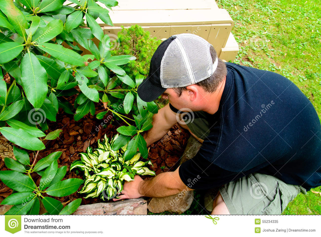 Man Planting and landscaping