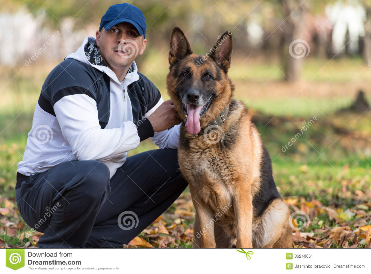 Man Playing With Dog German Shepherd In Park Stock Image ...