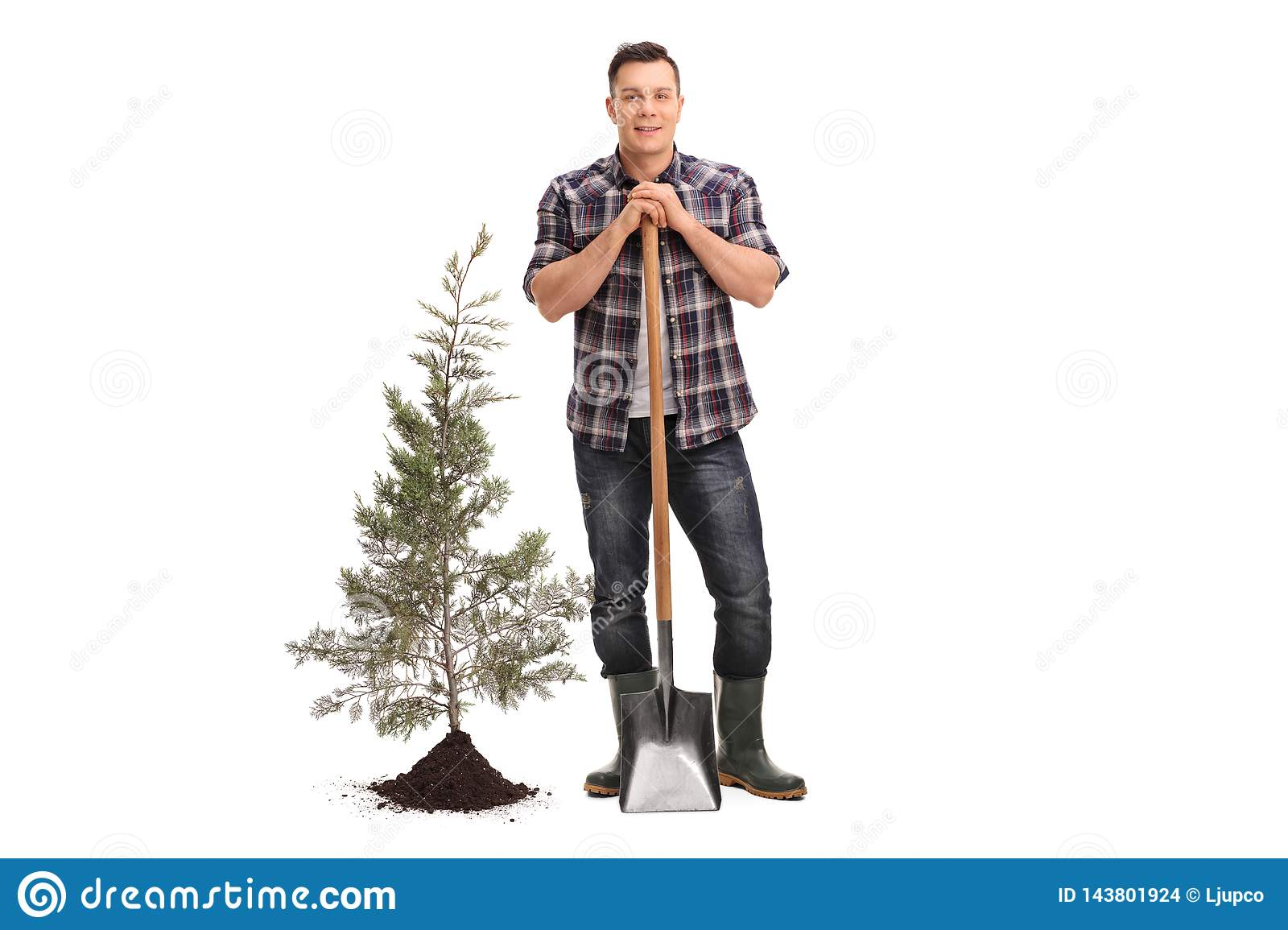 Man posing with a shovel next to a planted tree and soil