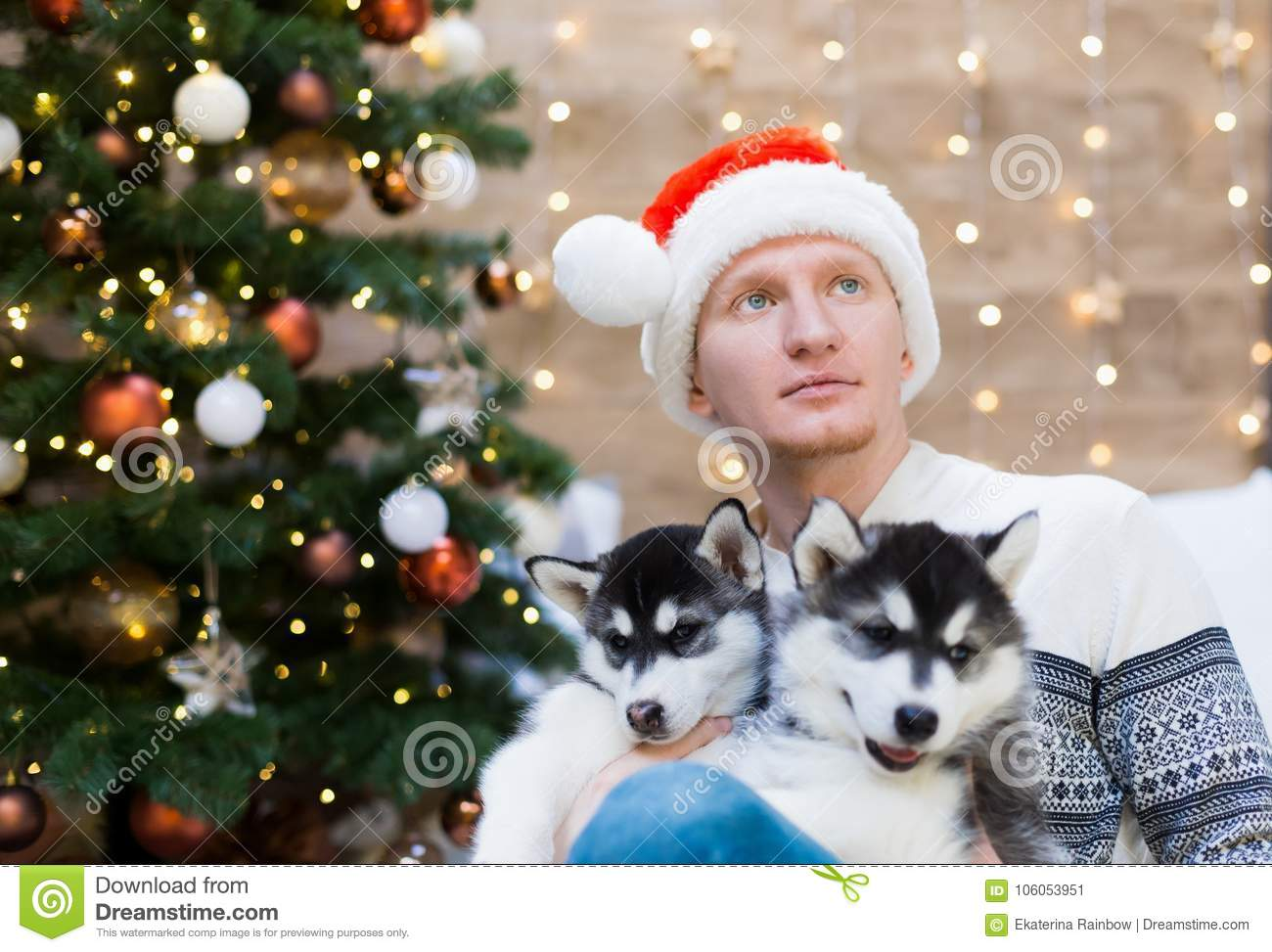 35bc6dc3d83f0 ... amazing background Christmas lights. New Year holiday card calendar.  Winter family home. Beautiful animals life. Couple friends Santa Claus.
