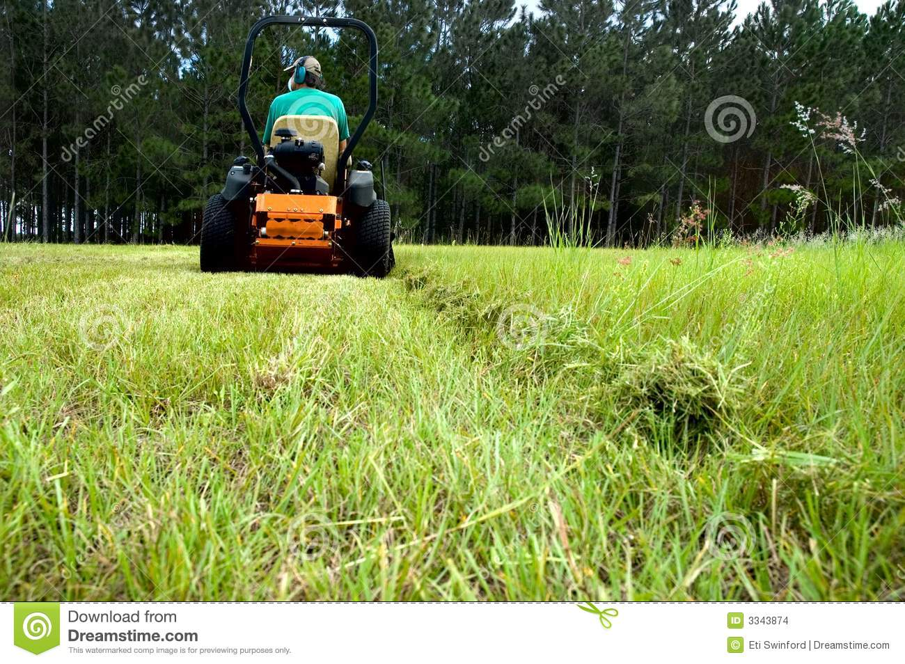 Man Riding Lawnmower Stock Photo Image Of Safety Yard