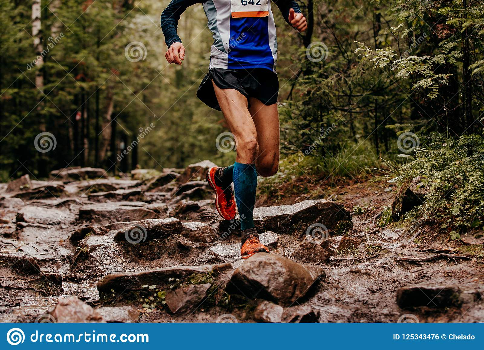 255ae3ba5 Man runner in compression socks running on trail of stone autumn forest