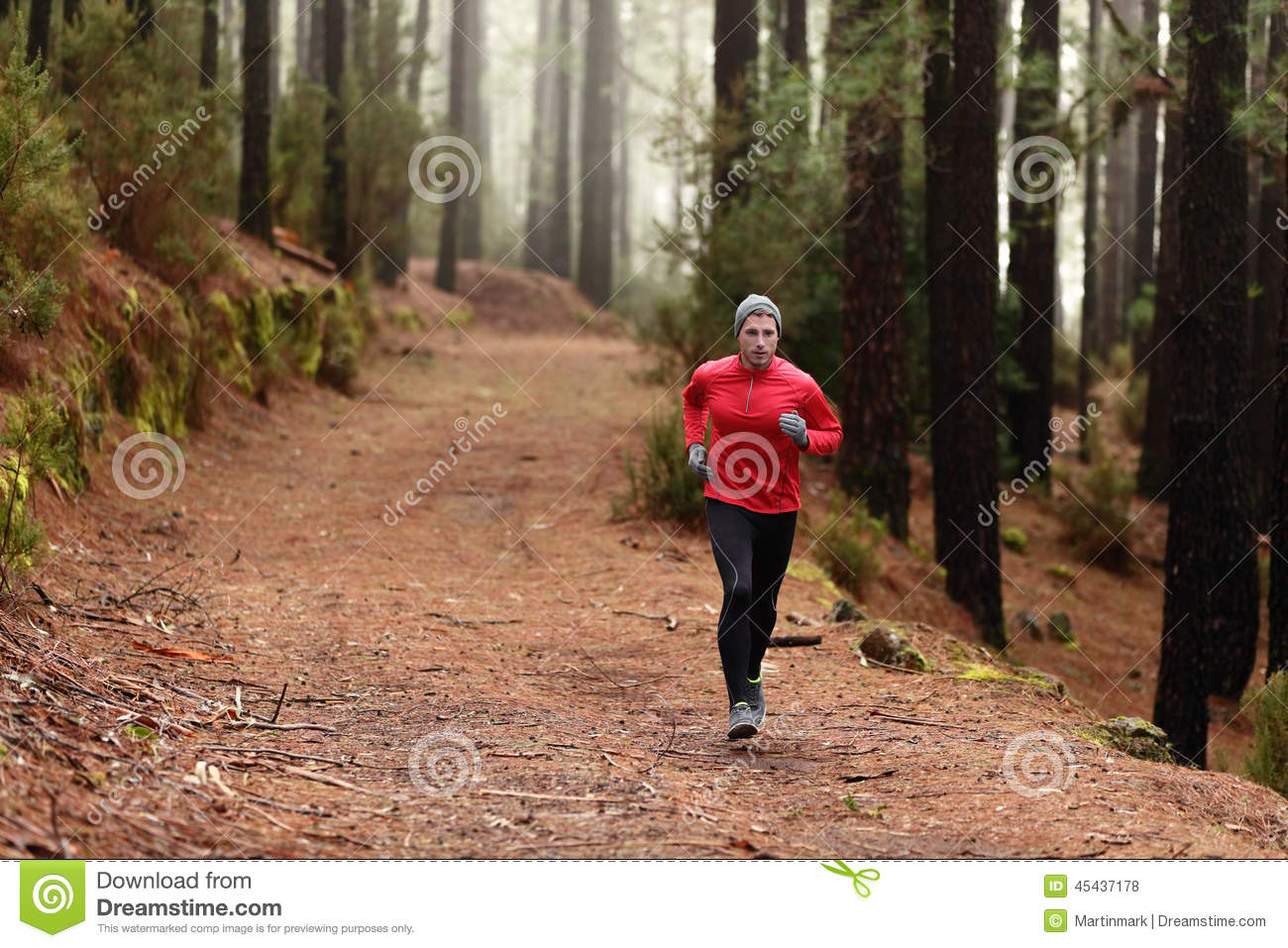 Man Running In Forest Woods Training Stock Photo Image