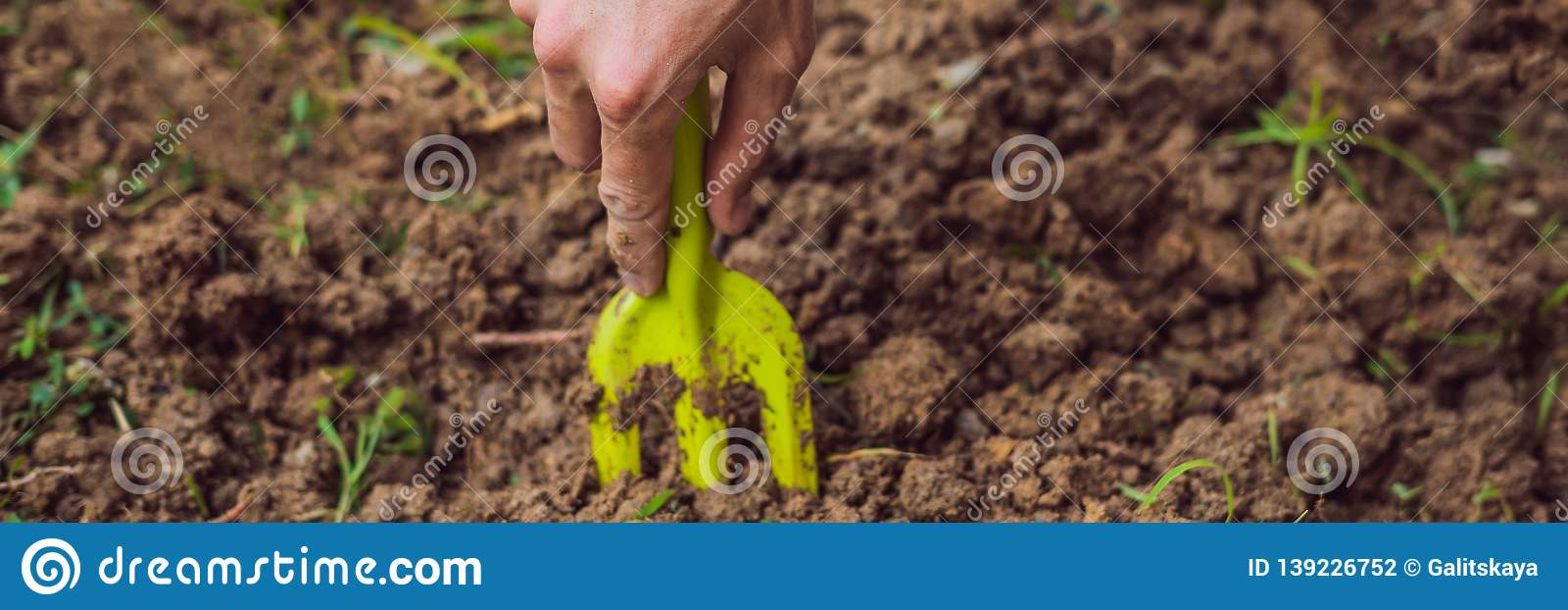 A Man S Hand With A Garden Tool Man Gardening Banner Long Format Stock Photo Image Of Environment Leaf 139226752