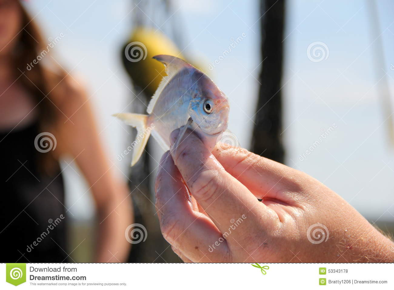 Man 39 s hand holding up fan fish stock photo image 53343178 for Is a fish wet