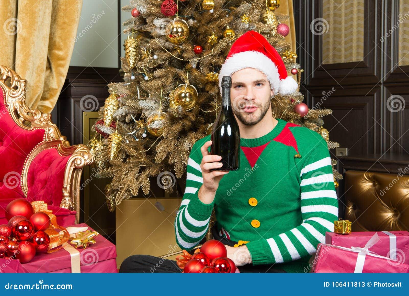Cat animals christmas tree santa costume wallpaper and background