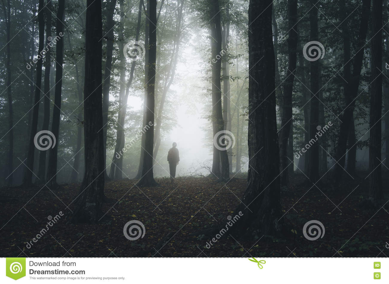 Man Silhouette In Mysterious Halloween Forest Royalty-Free ...