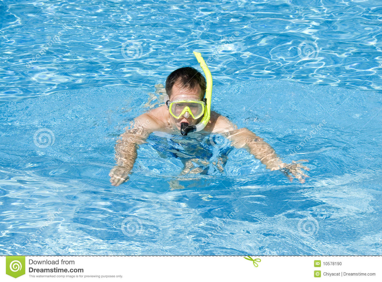 man snorkeling in a pool stock photo image of blue outdoor 10578190