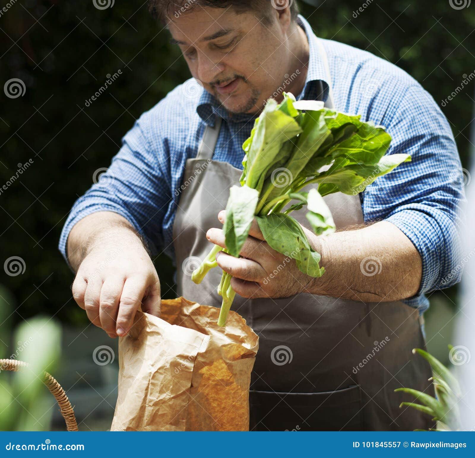 Man som köper den nya organiska grönsaken från marknad