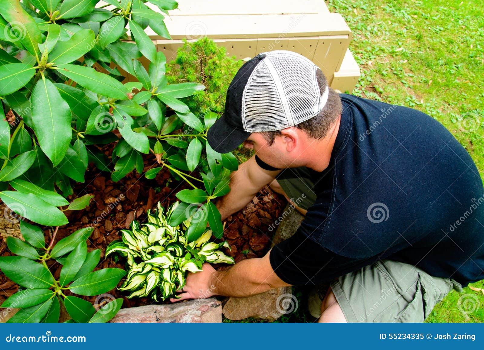 Man som planterar och landskap