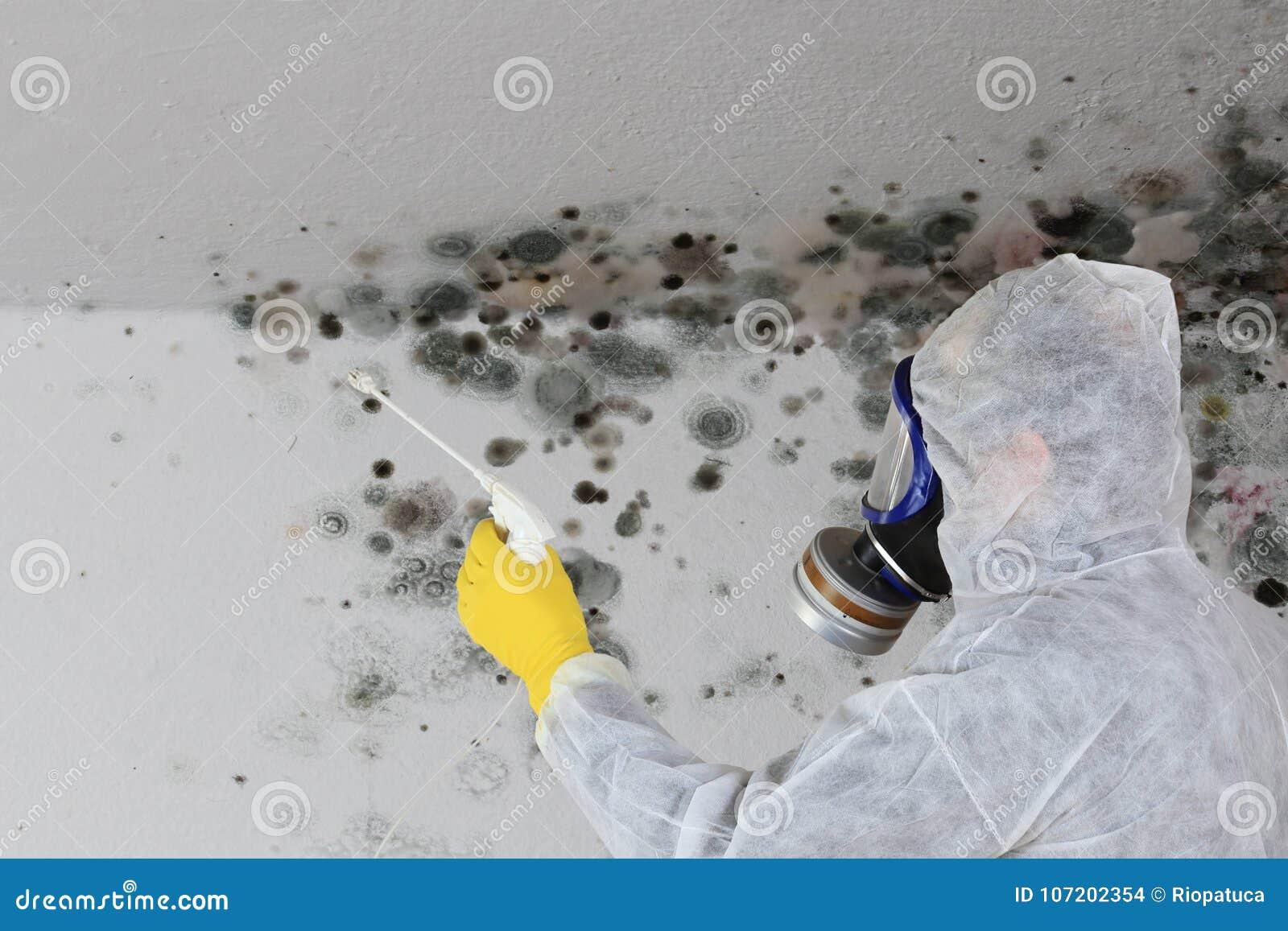 Man som tar bort formsvampen med respiratormaskeringen