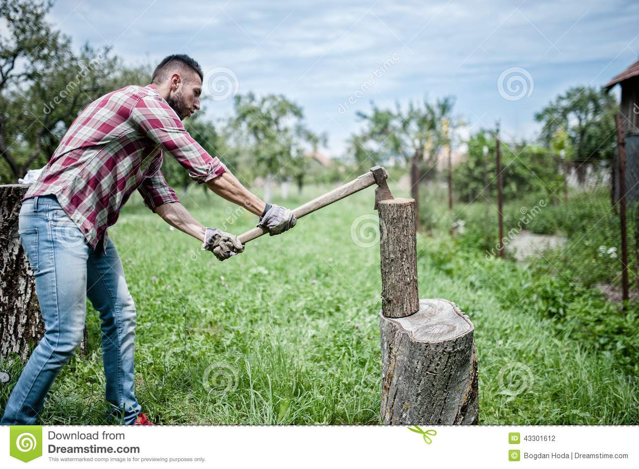 Man Splitting Wood And Cutting Firewood With Axe Stock Photo - Image ...