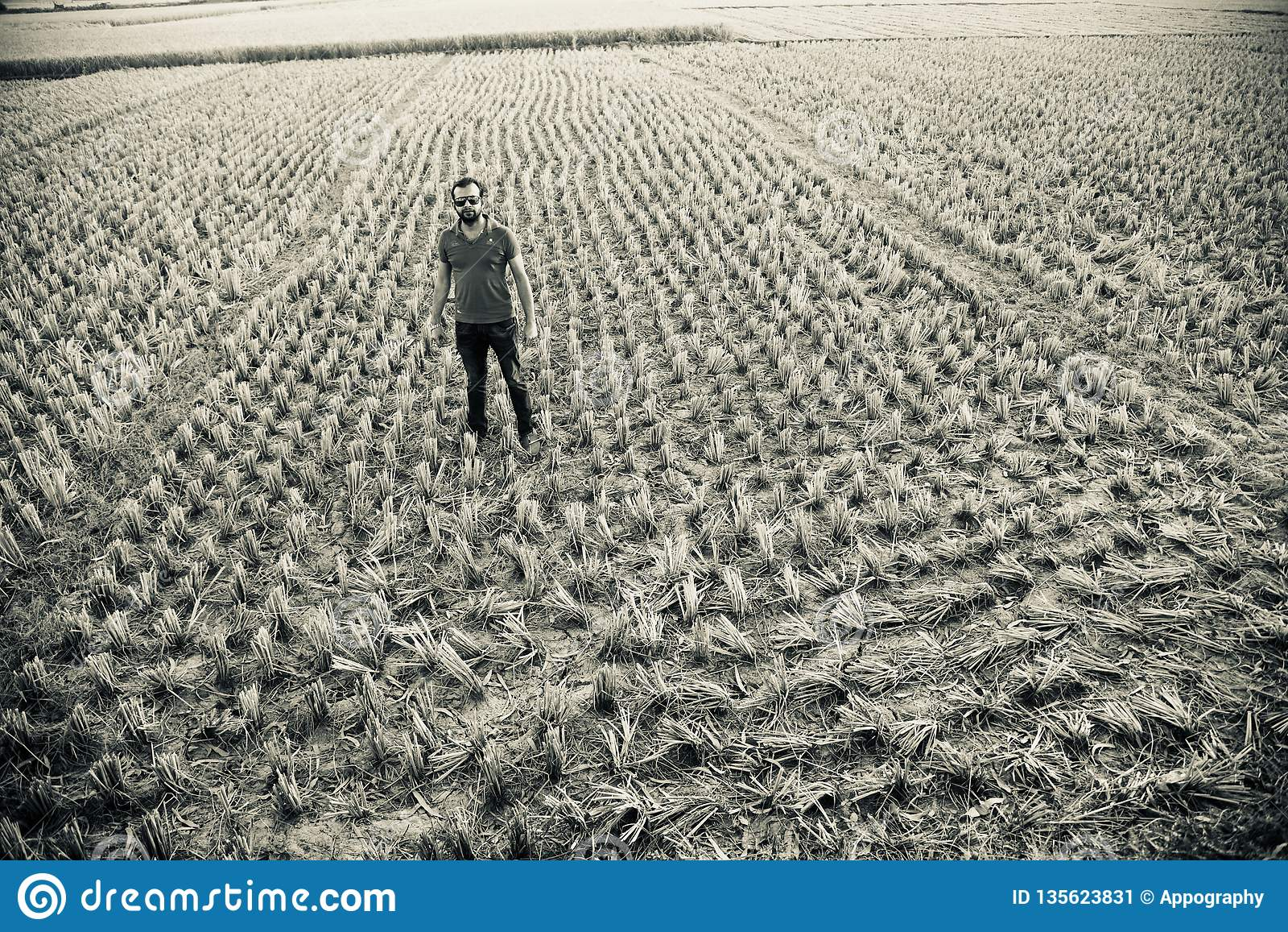 Man standing around an agricultural field unique photo