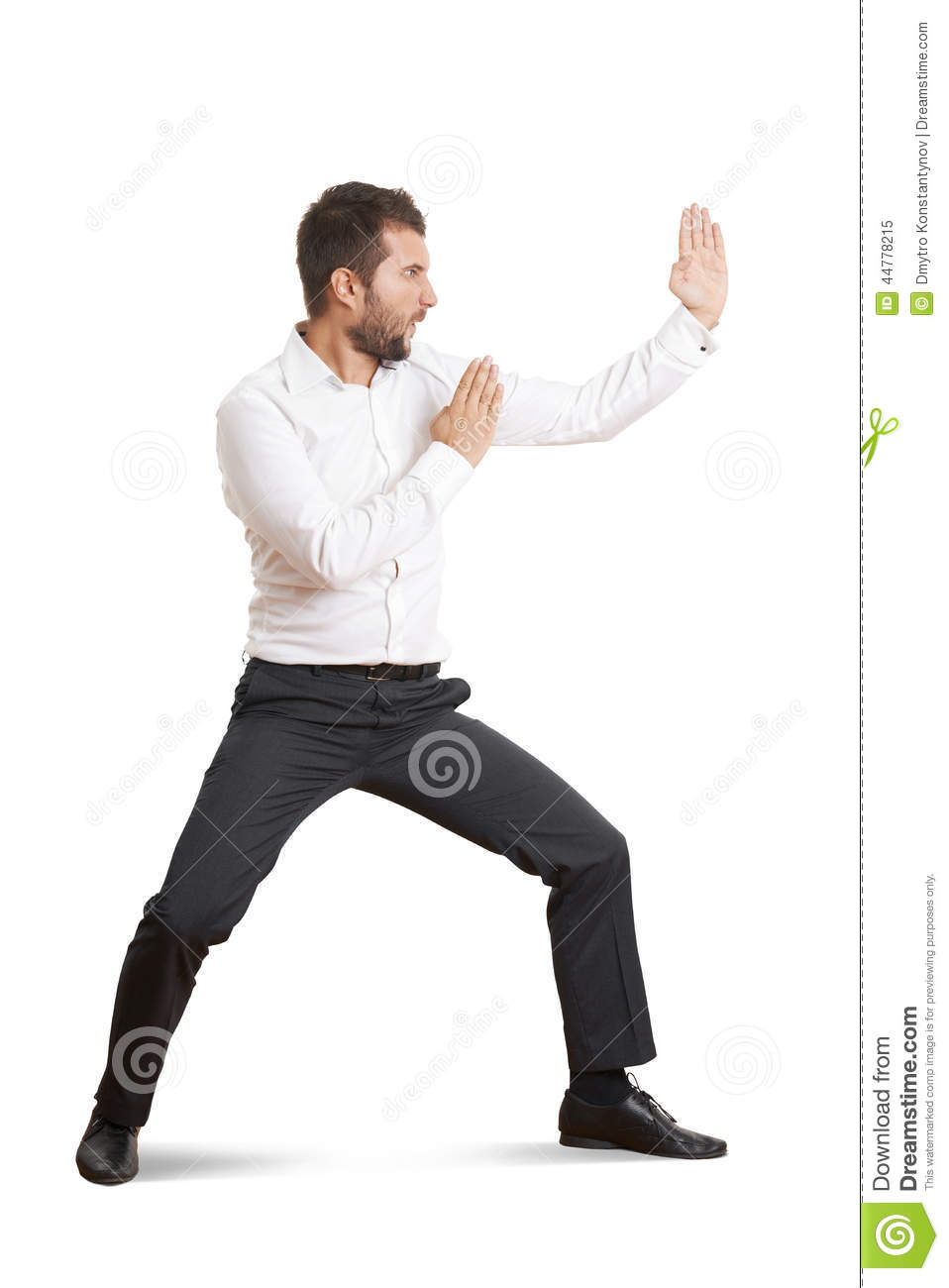 Man Standing In Pose As Karate Stock Image - Image: 44778215