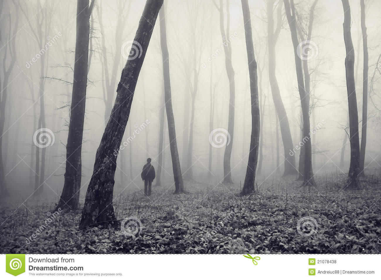 Man in strange mysterious forest with fog
