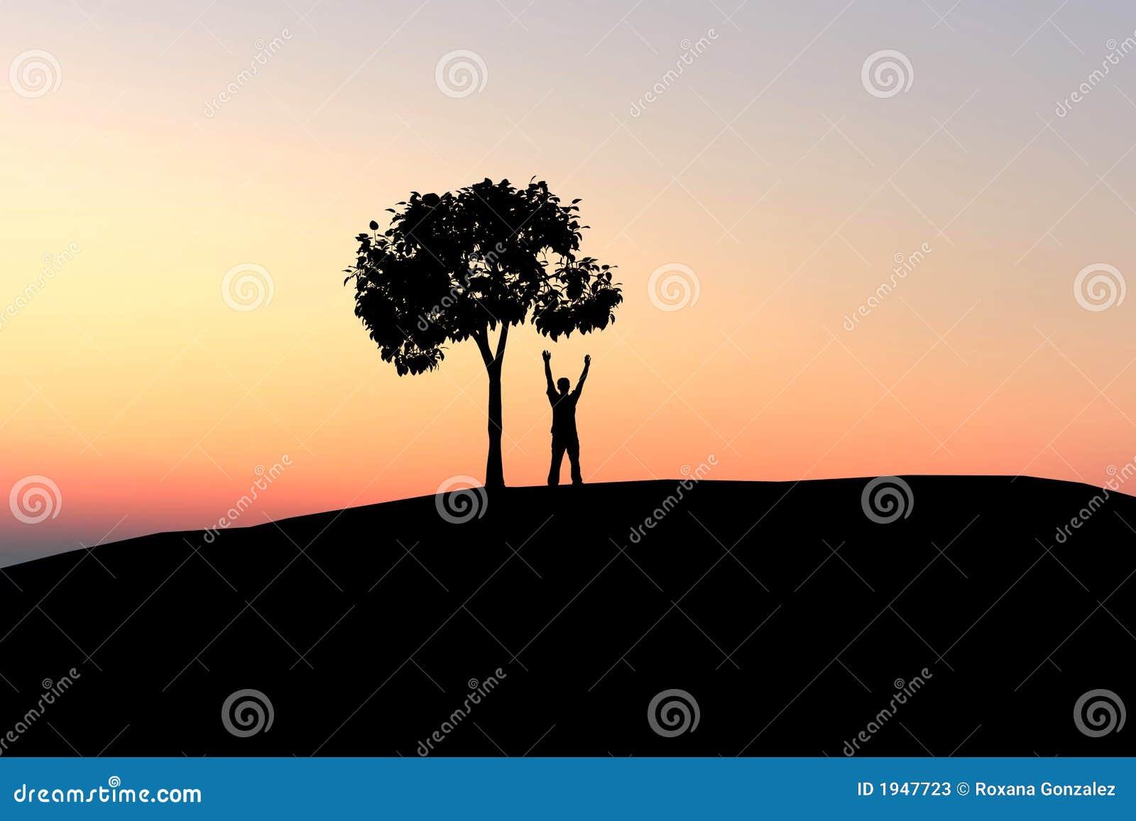the tree of man pdf