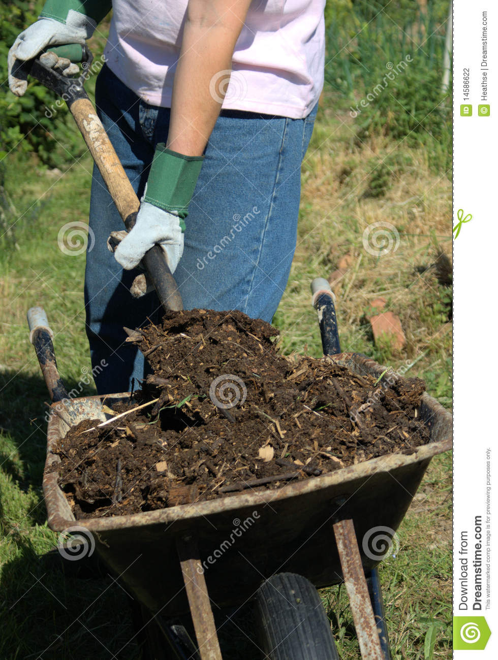 Man unloading compost from a wheelbarrow