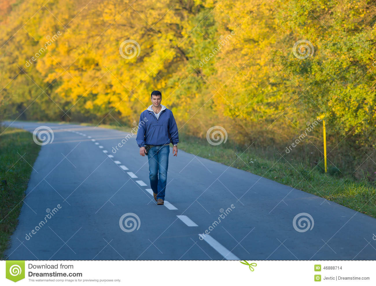Download Man walking in forest stock photo. Image of people, park - 46888714