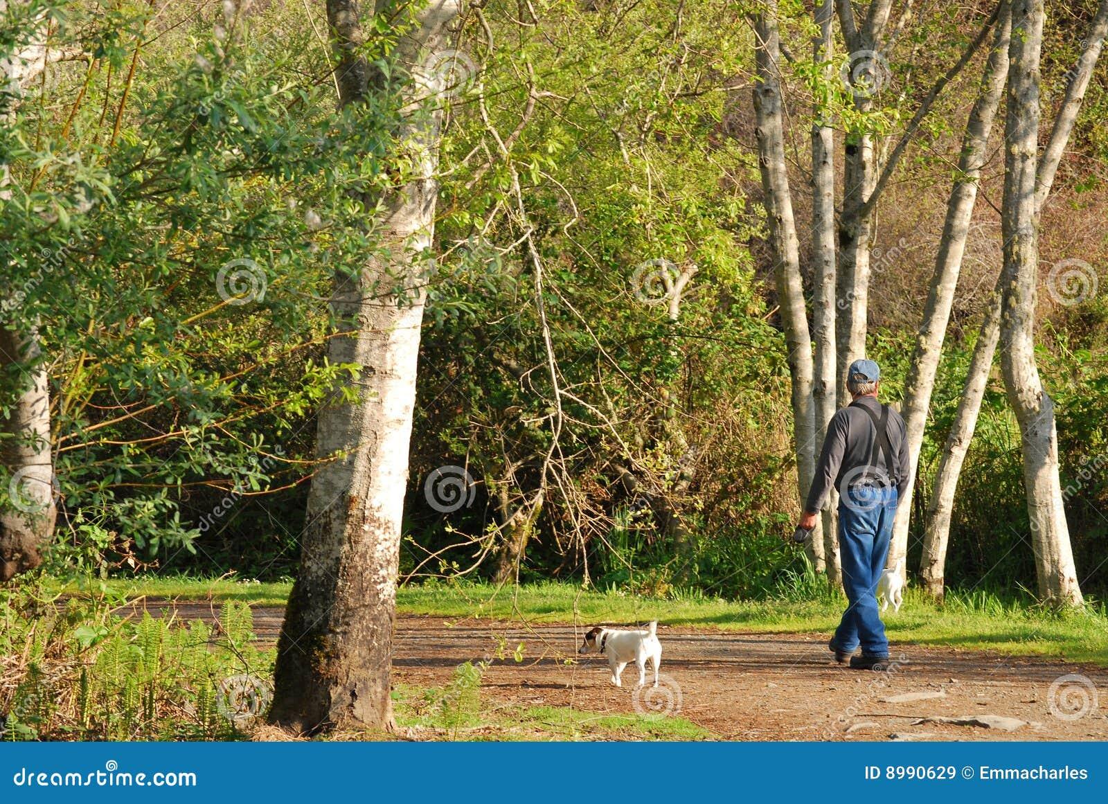Man Walking His Dog In Nature Stock Image Image 8990629