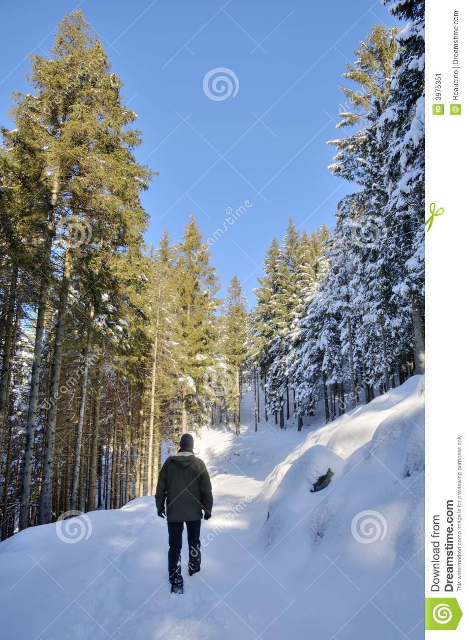 walking in the snow - photo #34