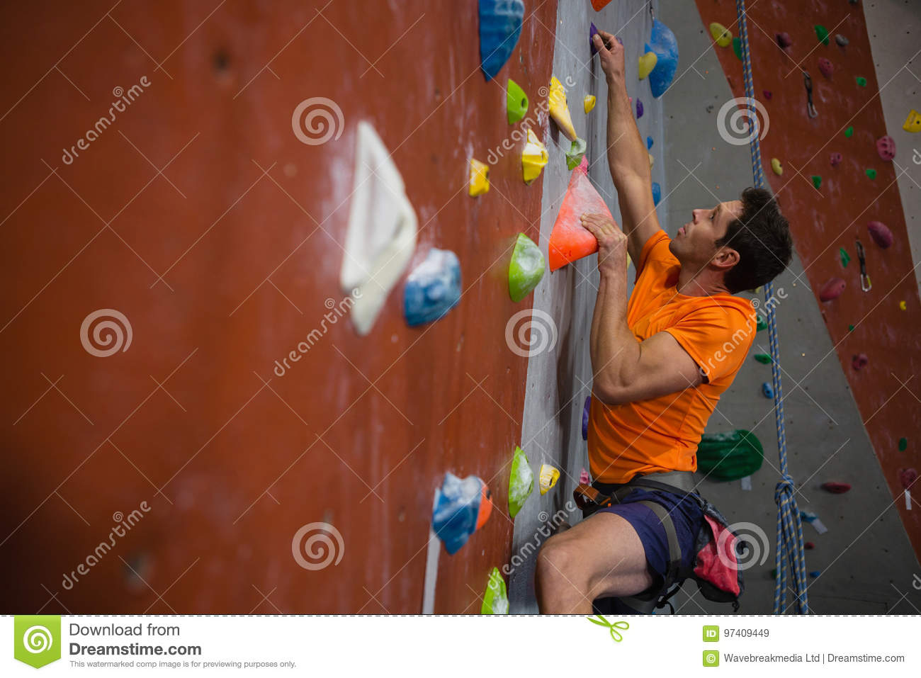Download Man wall climbing in gym stock image. Image of male, exercise - 97409449