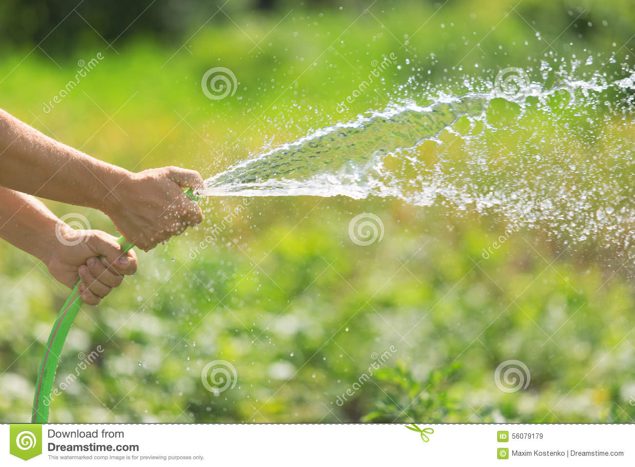 Man watering the garden from hose