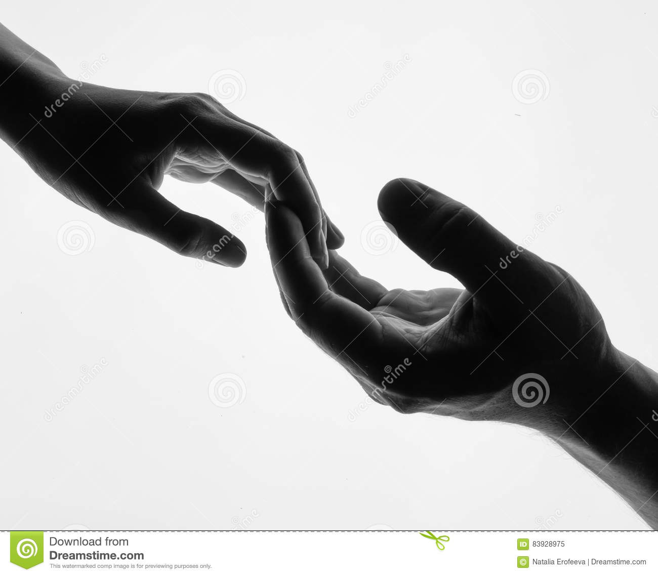 Man woman hold hands silhouette white background couple holding hands closeup black and white photo