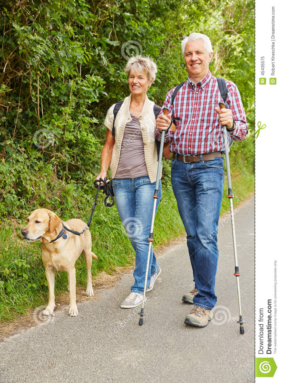 Best Dog For Middle Aged Couple