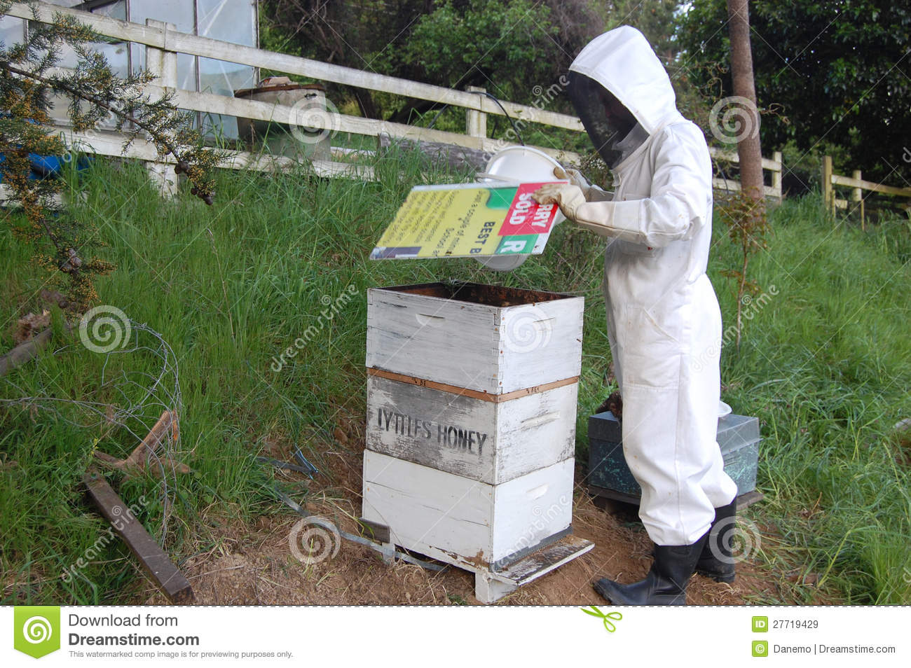 Man working with beehive
