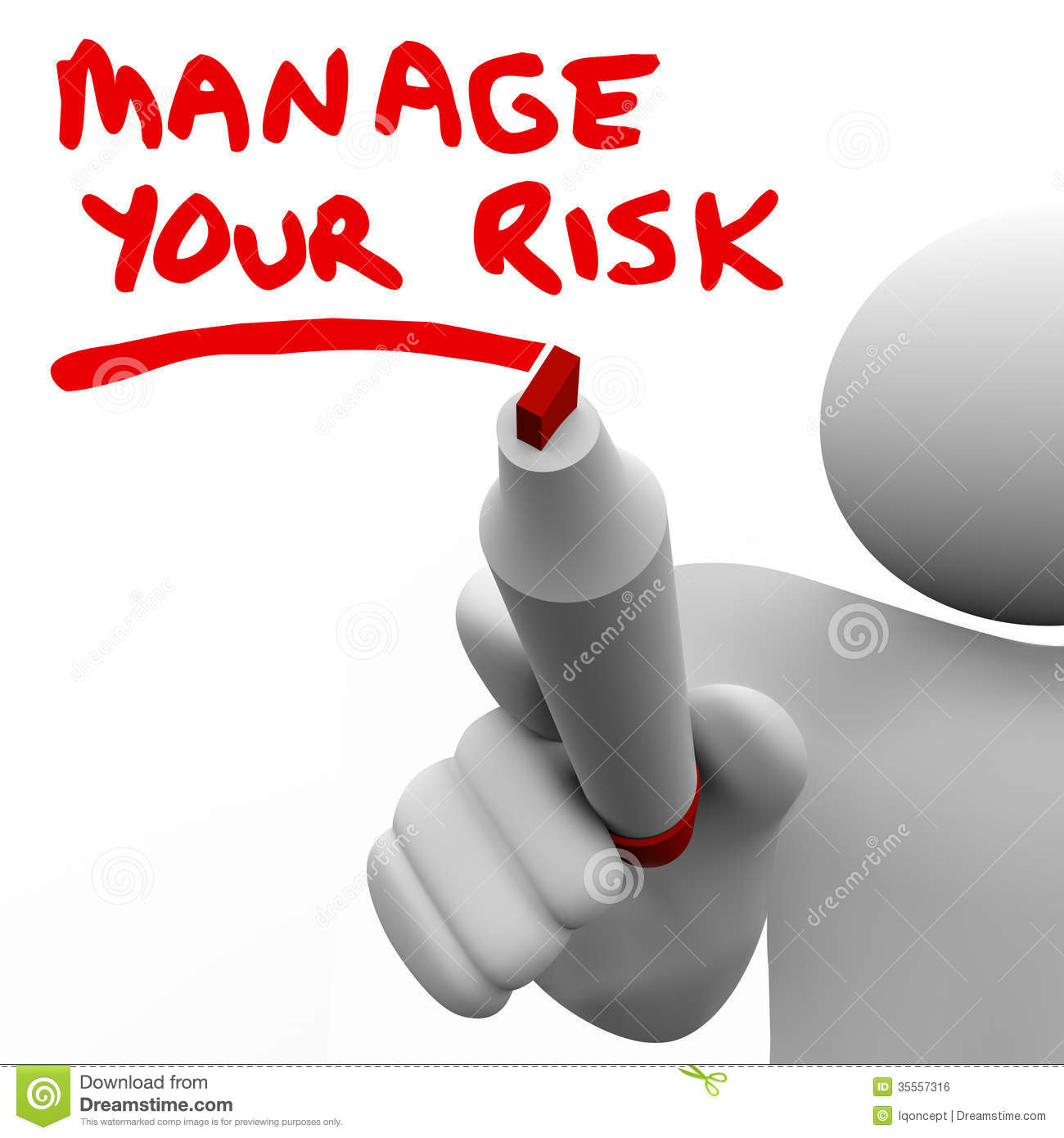 Risk Management and Insurance how to write an easay