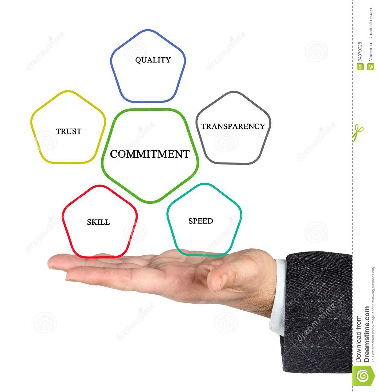 Management Diagram Stock Photo  Image Of Openess  Palm
