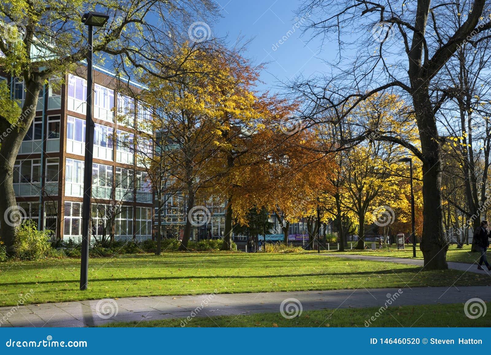 Manchester, Groter Manchester, het UK, Oktober 2013, mening van de bibliotheek van de Metropolitaanse Universiteit van Manchester