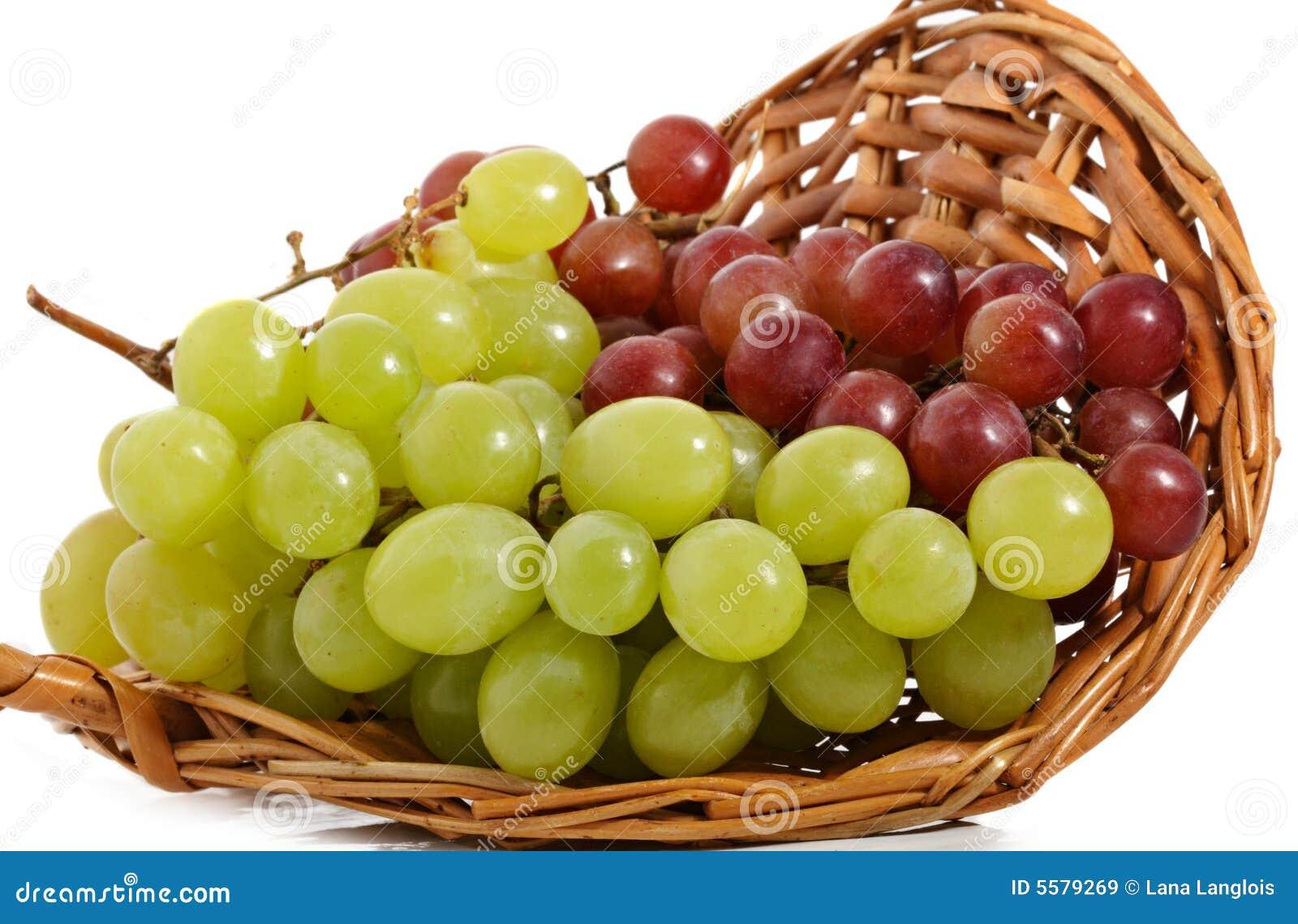 Mand van verse druif