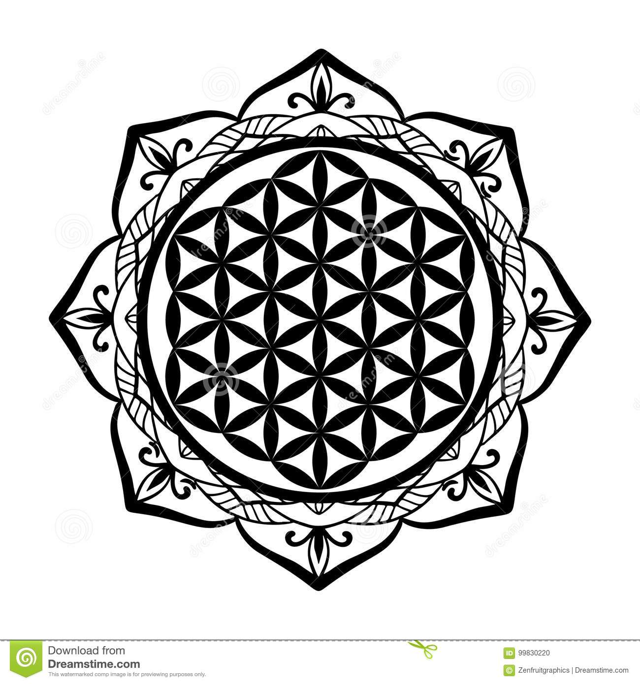 Mandala Frame And Flower Of Life Tattoo Or Stencil Template Sacred