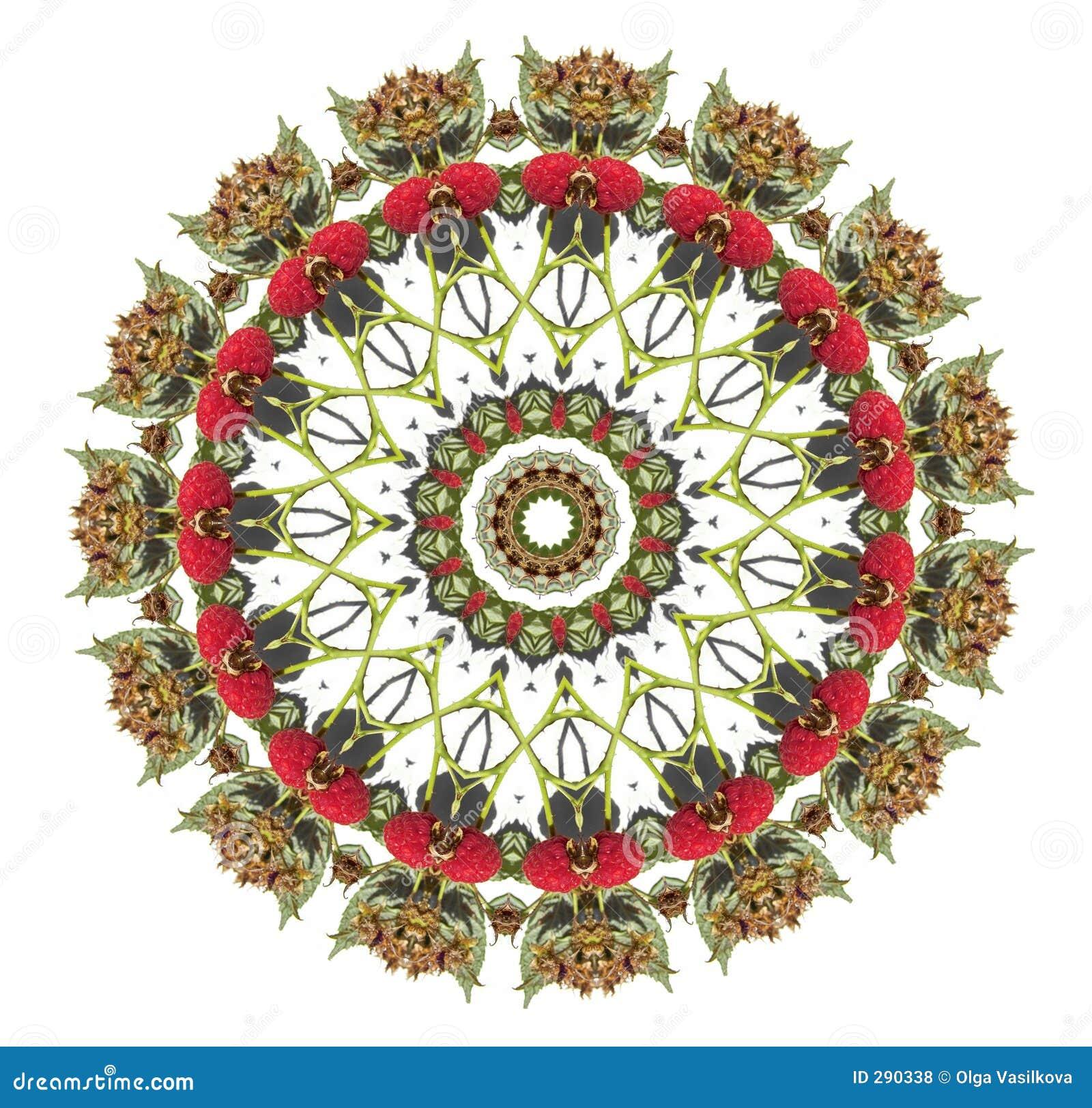Mandala van de framboos