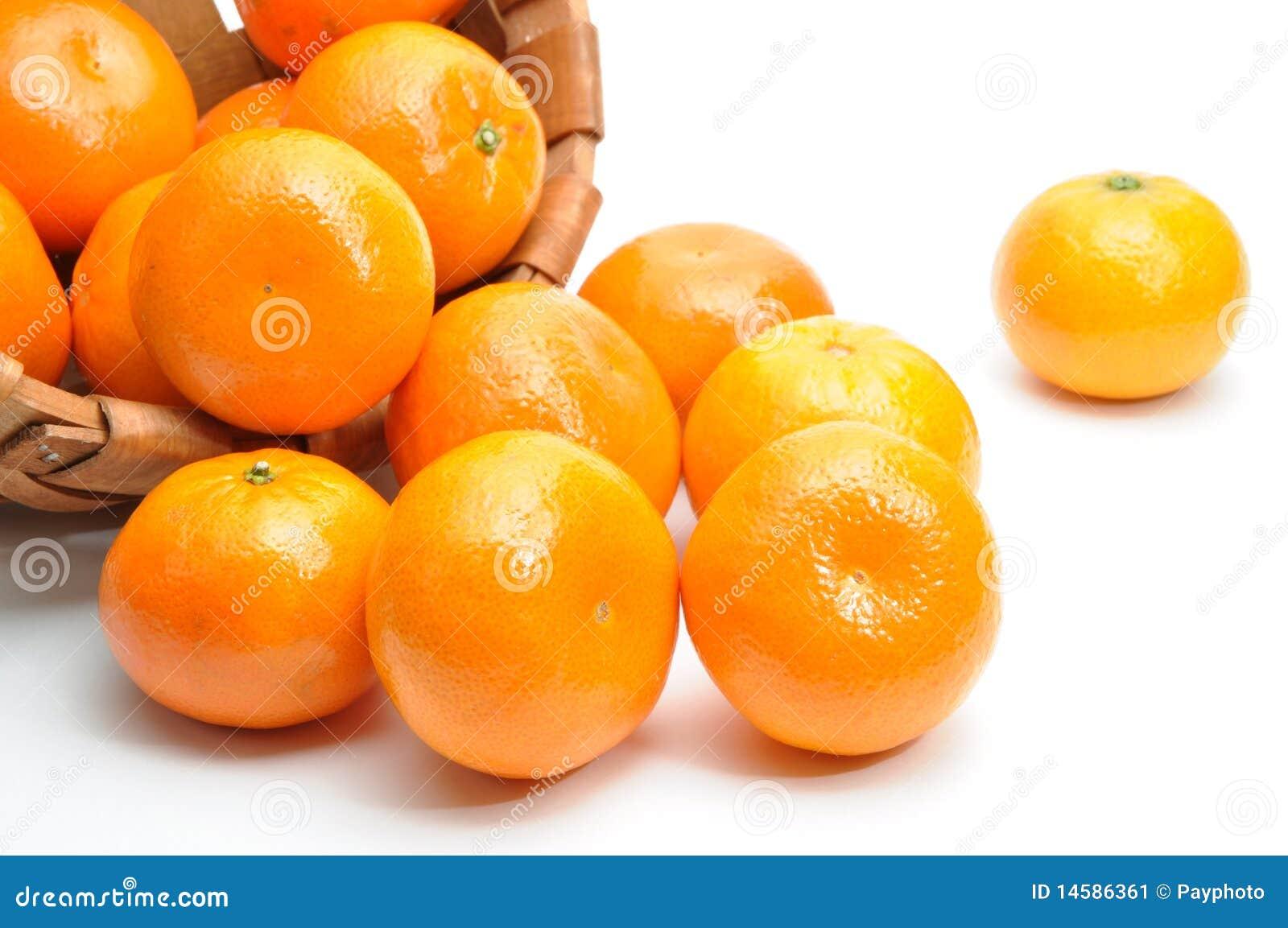 Mandarine Baby