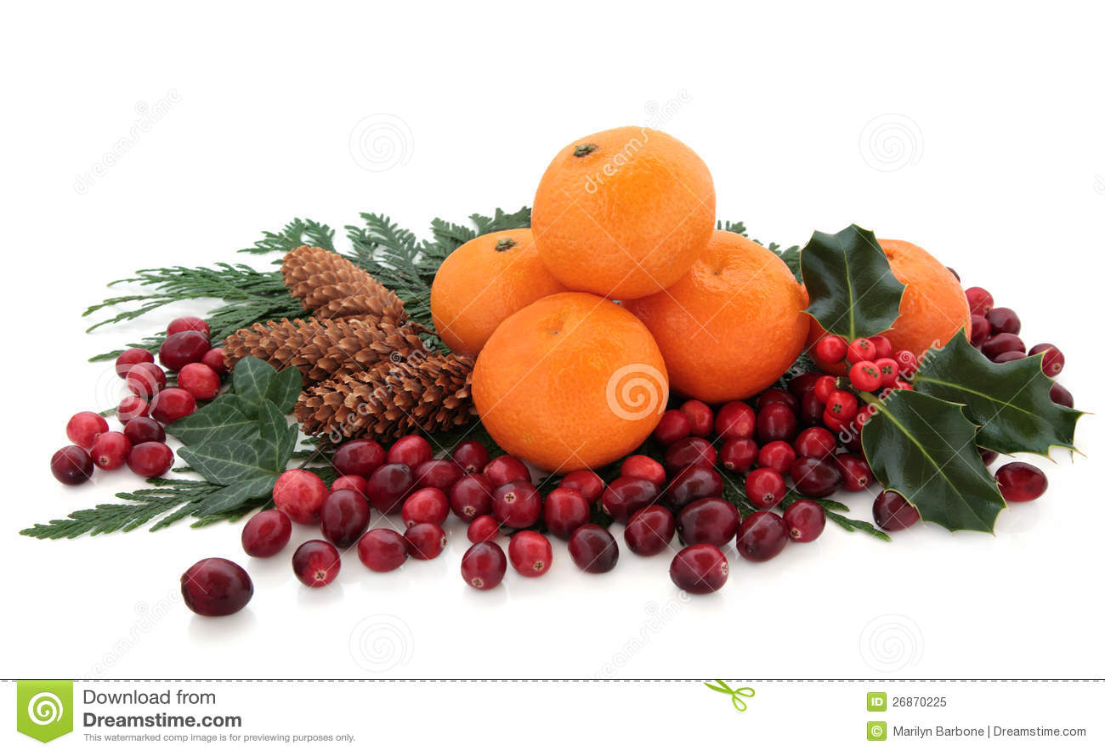 mandarin fruit mr fruit