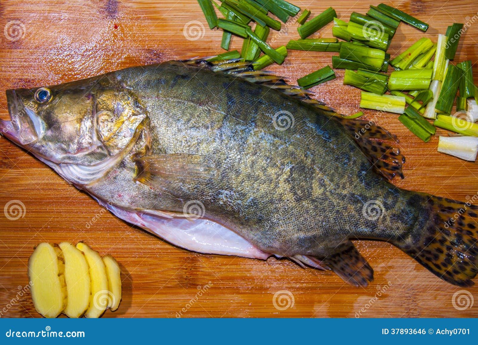 Mandarin vissen