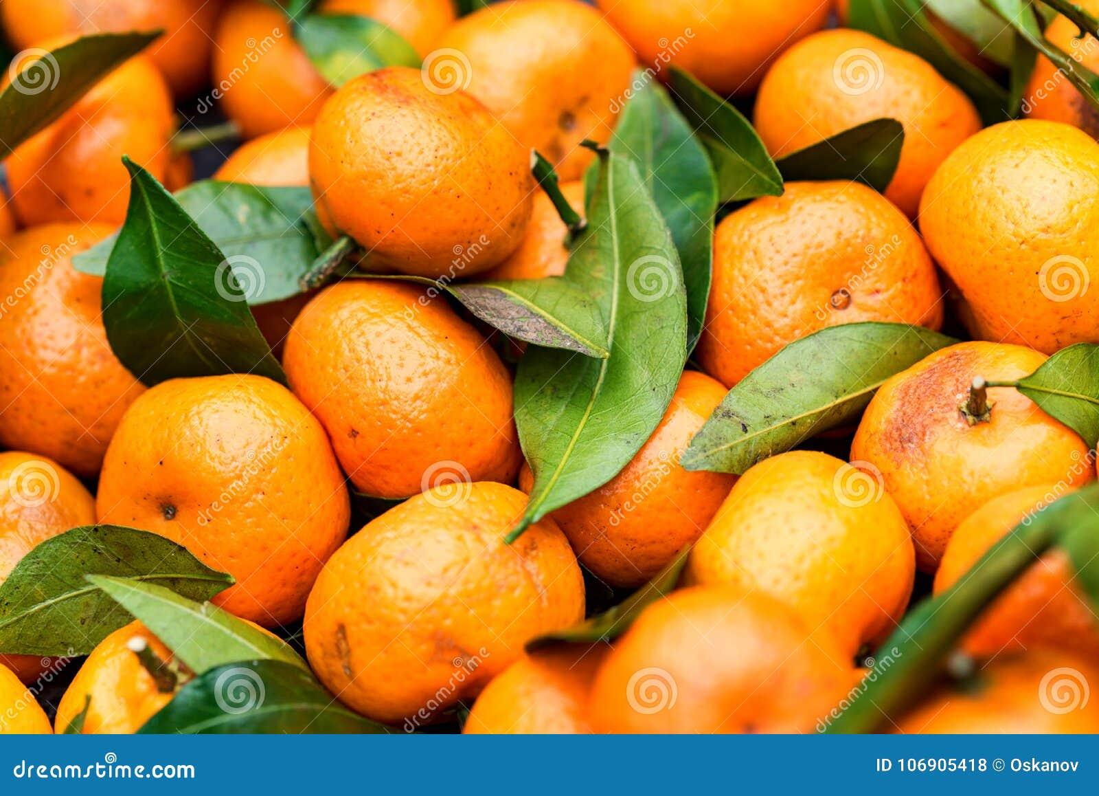Mandarine tangerine lub pomarańcze tło