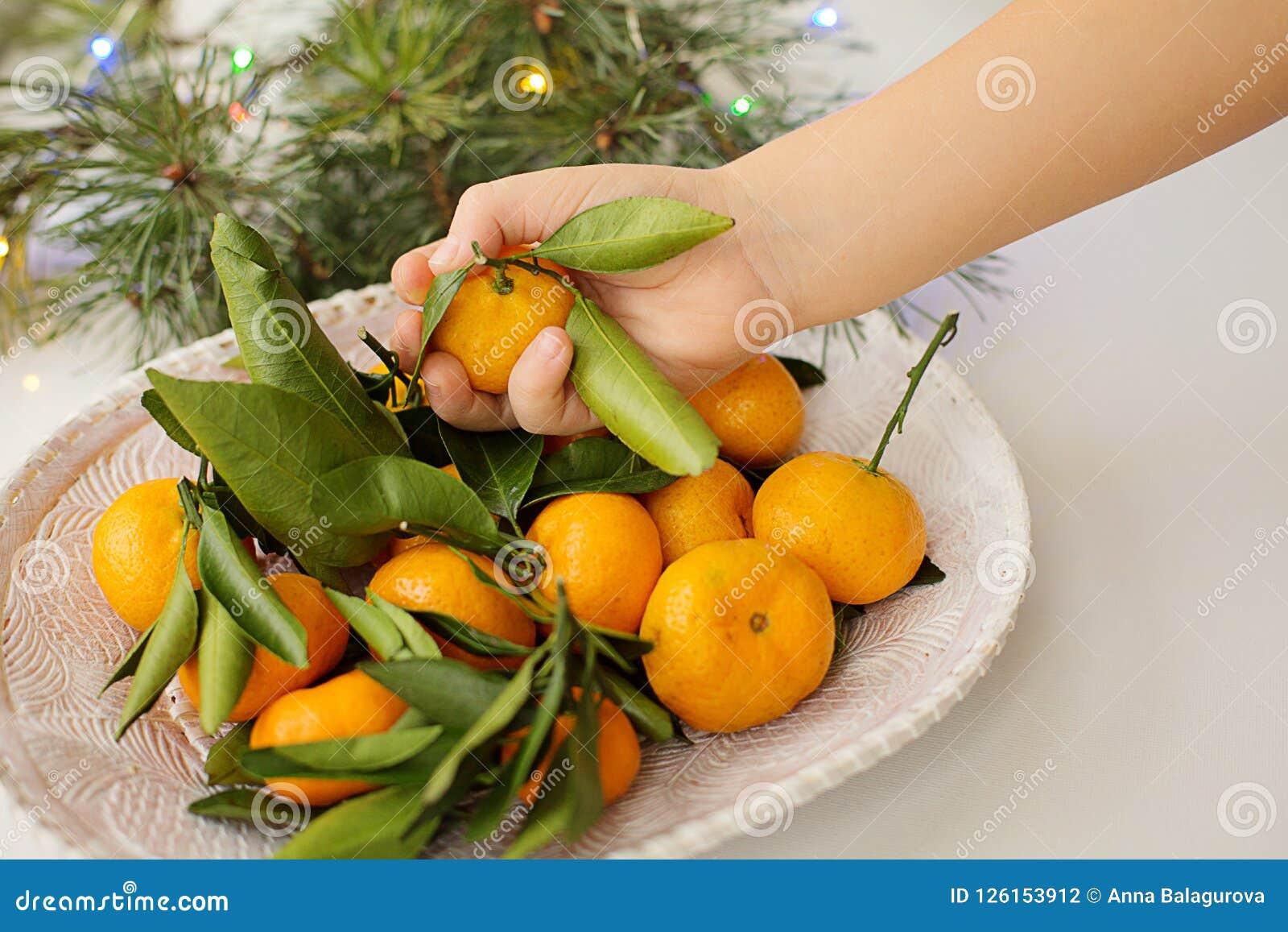 Mandarines chez des mains du ` s des enfants d un plat blanc