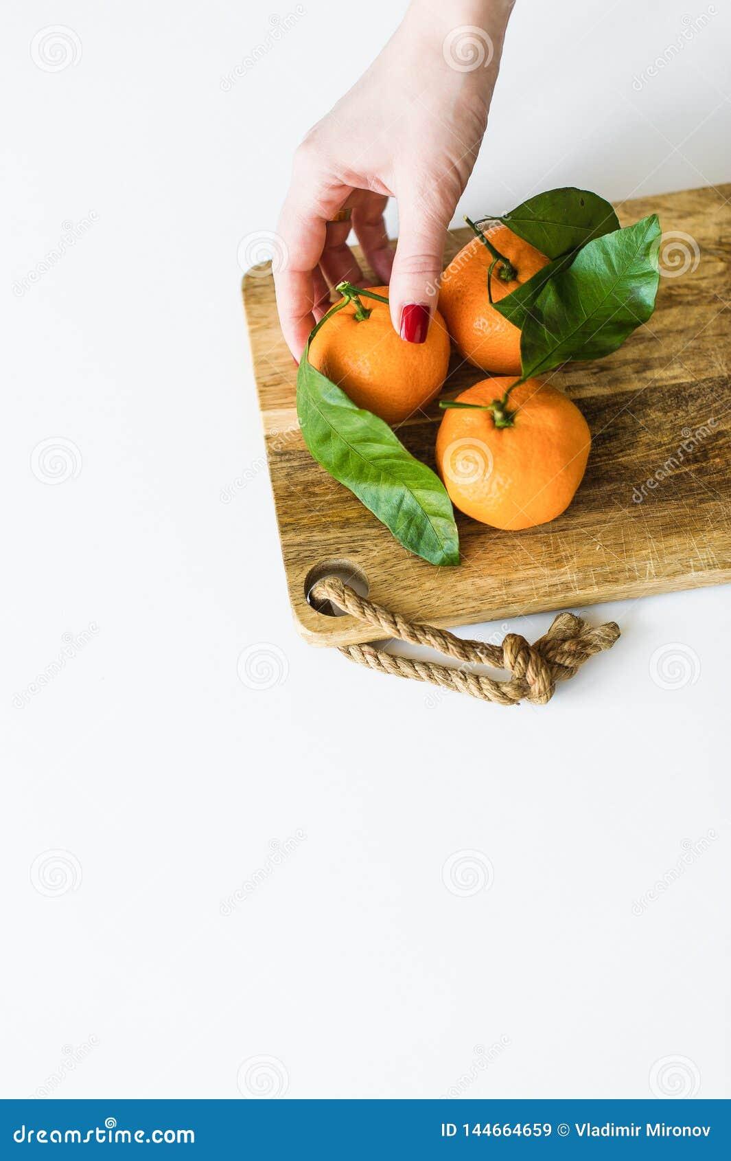 Mandarino della tenuta della mano con un ramo su fondo bianco