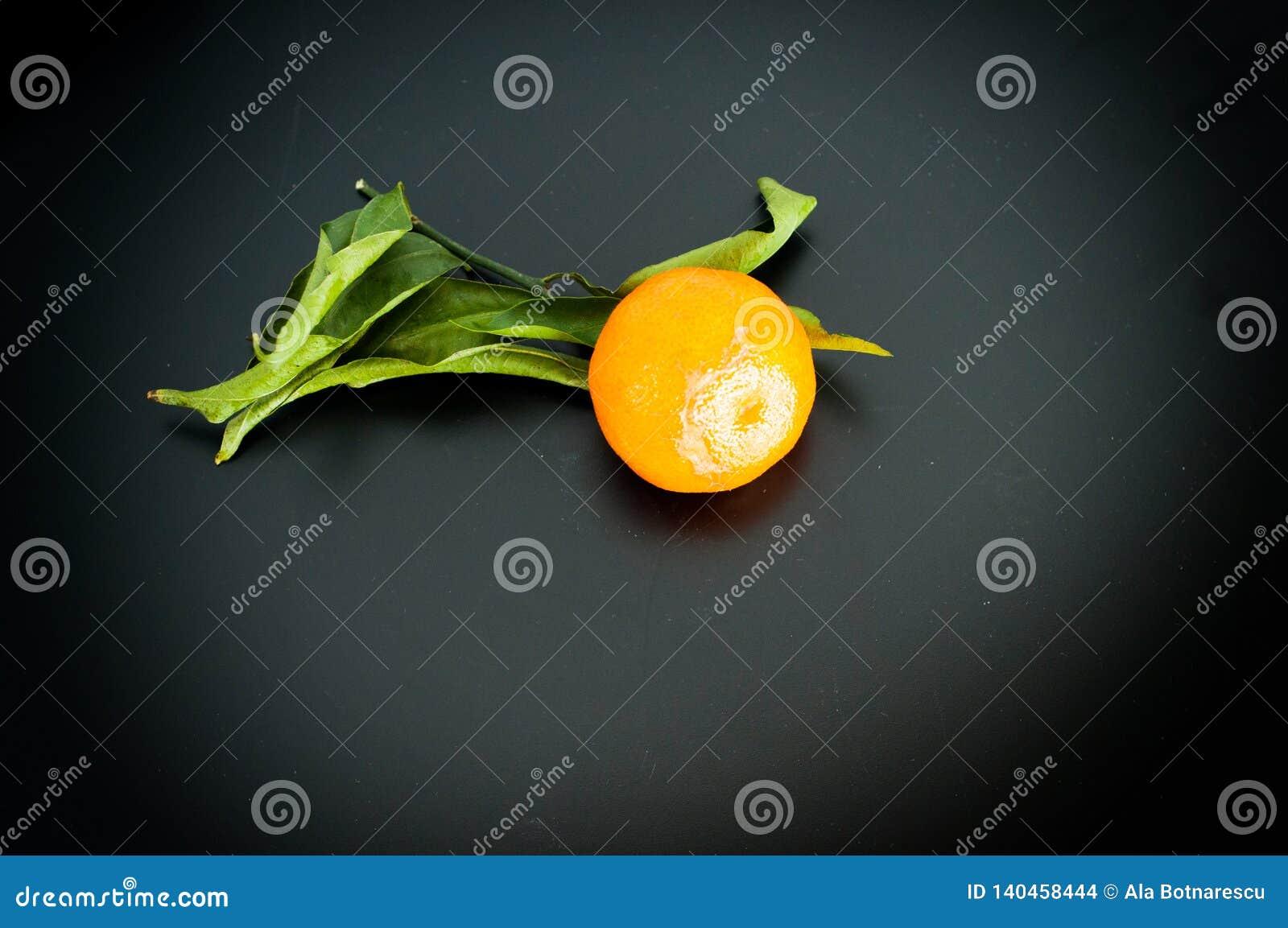 Mandarino sulle clementine arancio del mandarino della frutta del fondo nero