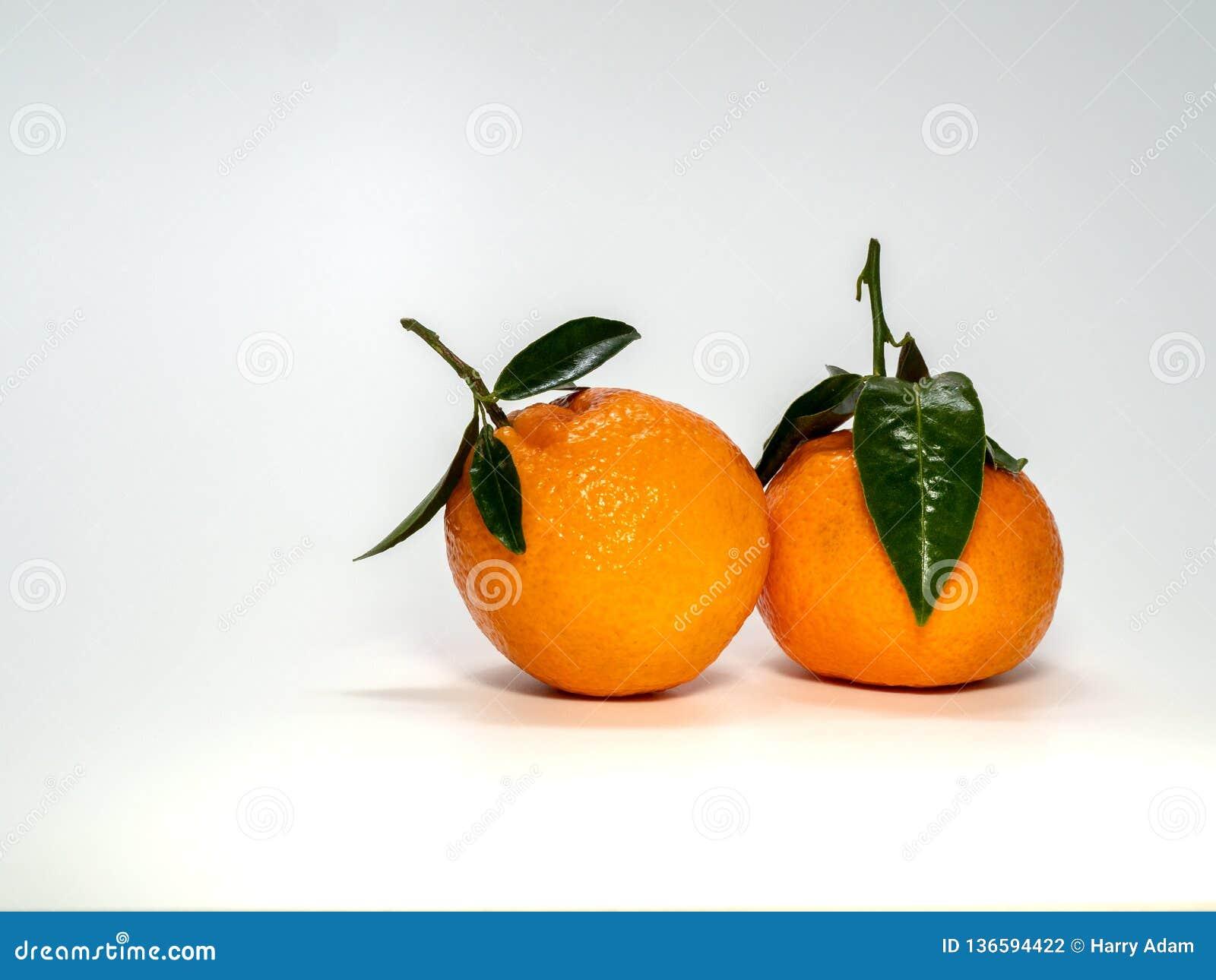 0624 mandarynu z trzonem i liśćmi małymi,