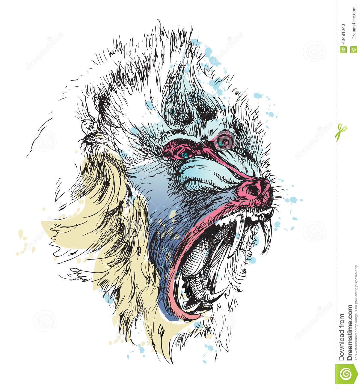 Gallery For gt Mandrill Baboon Drawing