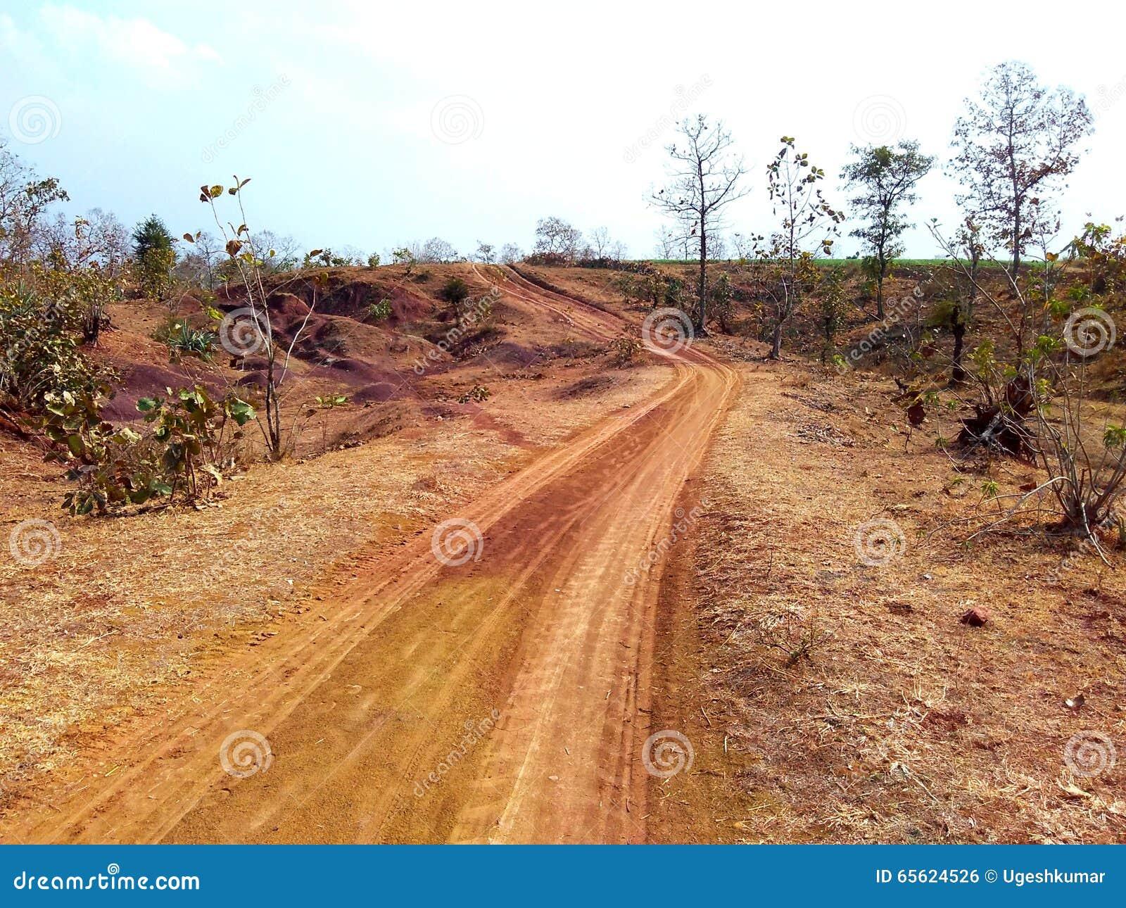 Maneira através da selva, satpura india
