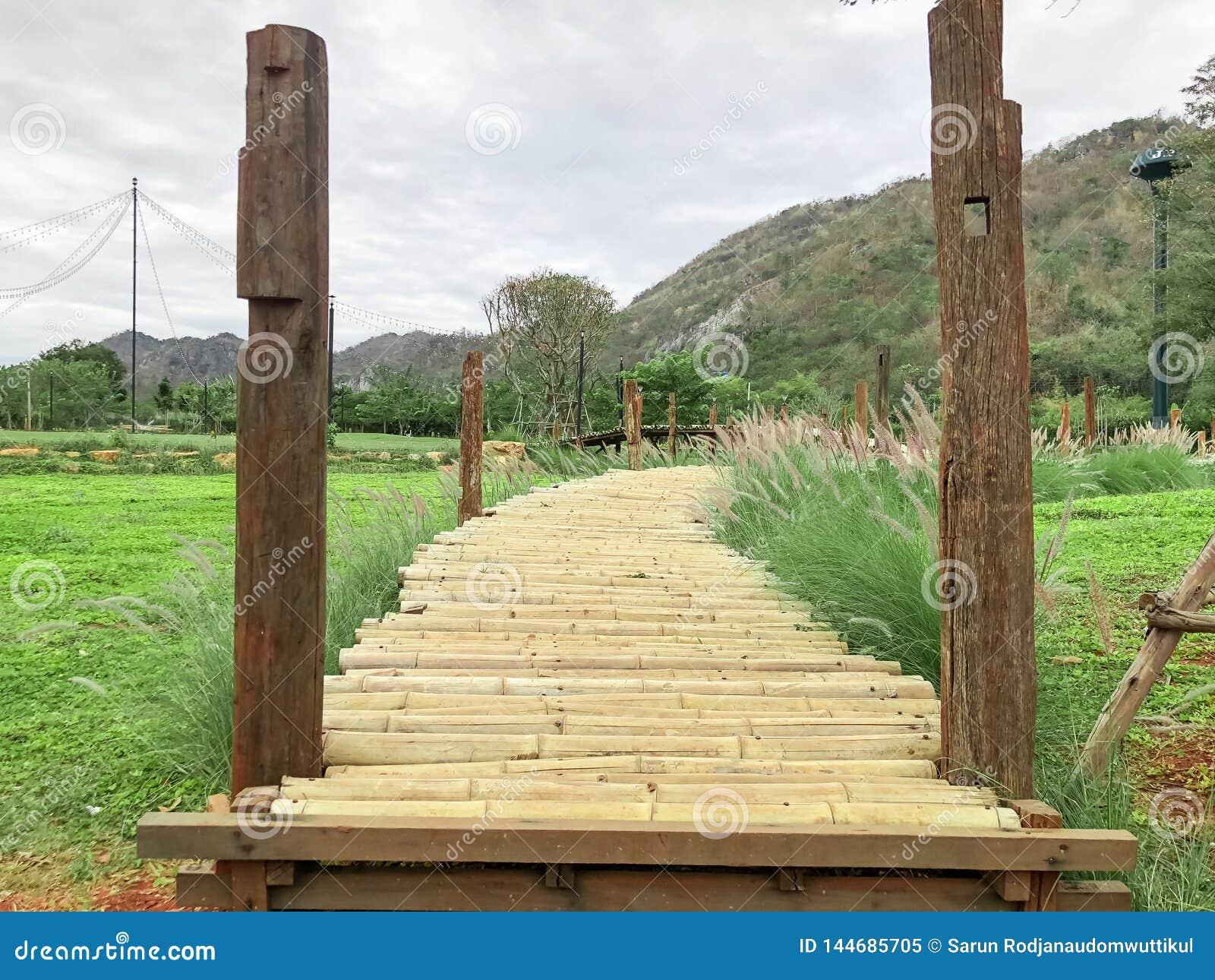 Maneira da ponte de madeira ao jardim no recurso