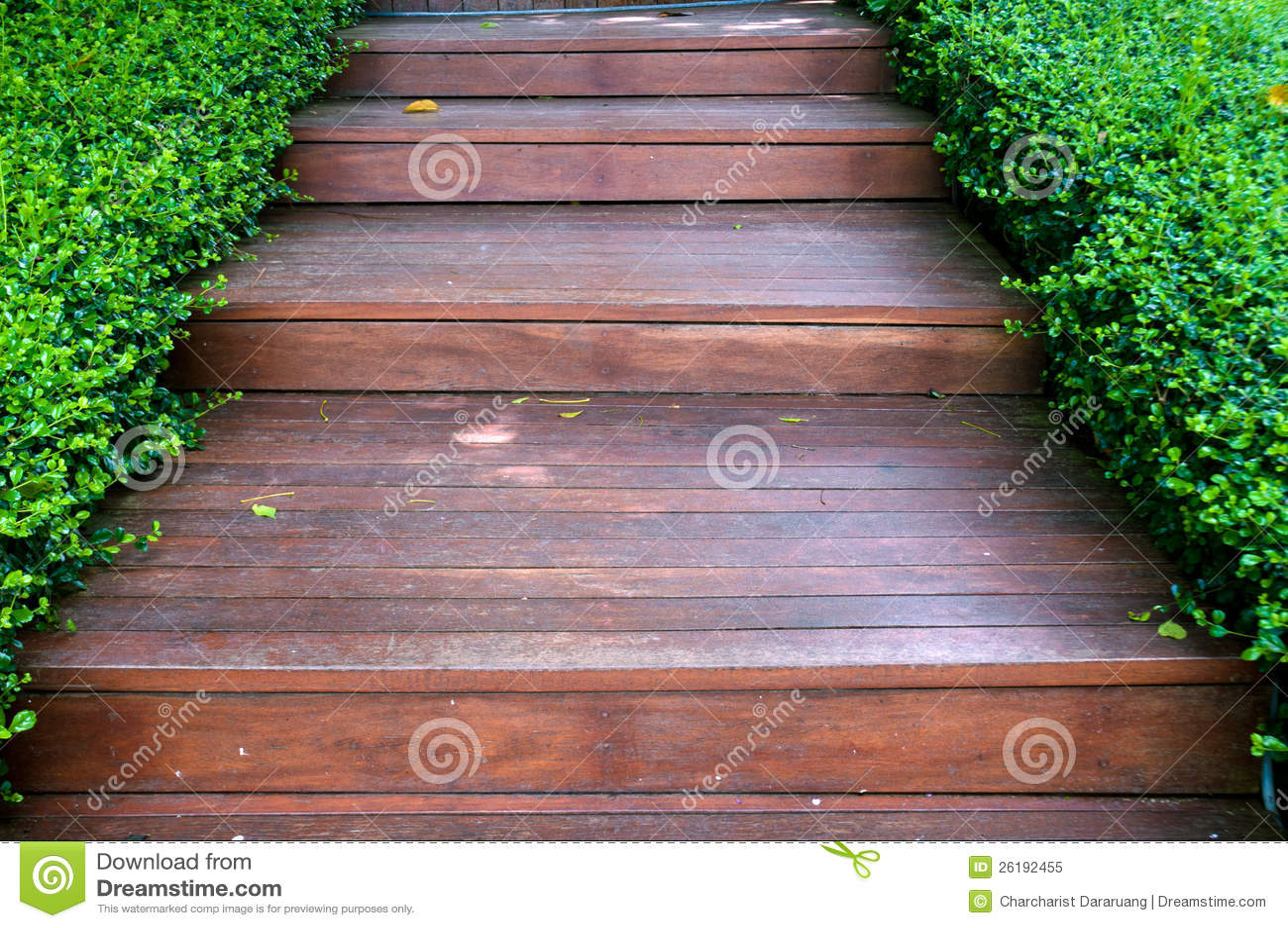Maneira de madeira da escada no jardim verde imagem de stock imagem de bonito arquitetura - Scale in giardino ...